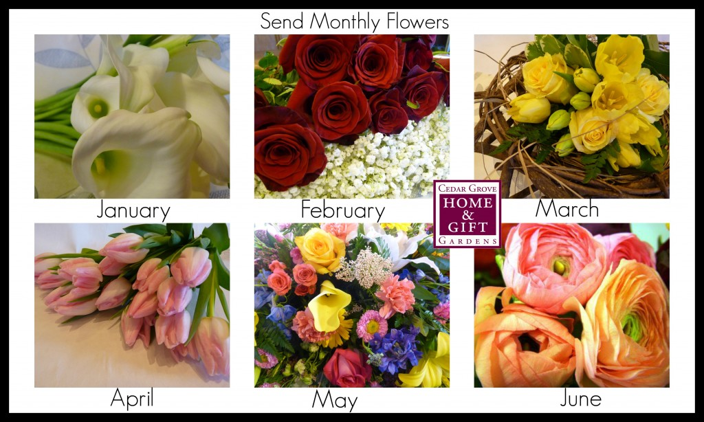 monthly flowers